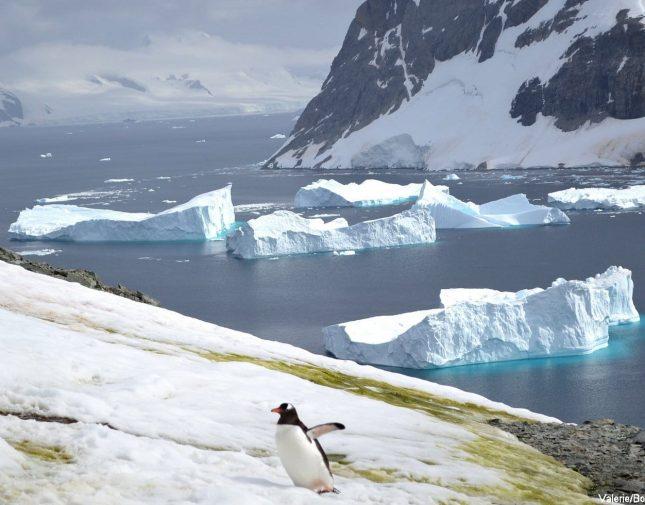 expedition-en-antarctique-66-33-slide3